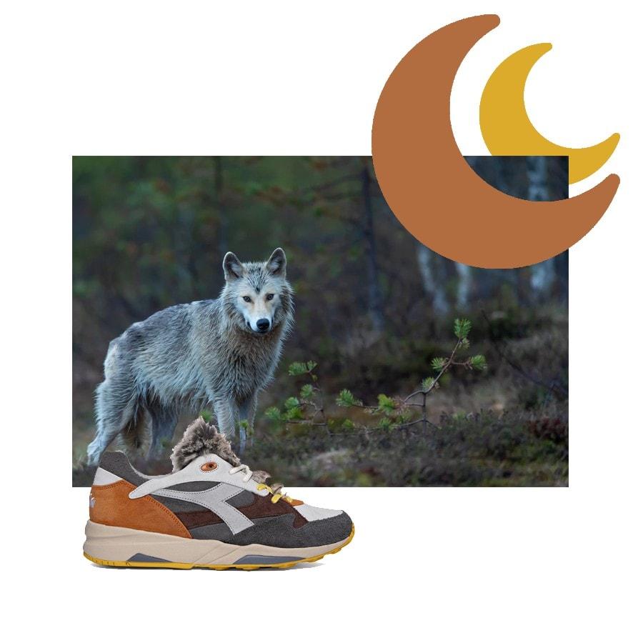 Poznaj najnowszą kolekcję sneakersów marki Diadora, która została stworzona po to, by pomóc w ratowaniu zagrożonych gatunków zwierząt.